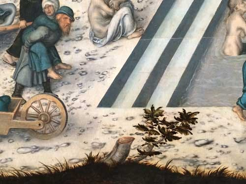 YEAR-Philosphy-Cranach-detail-bush-IMG_4907